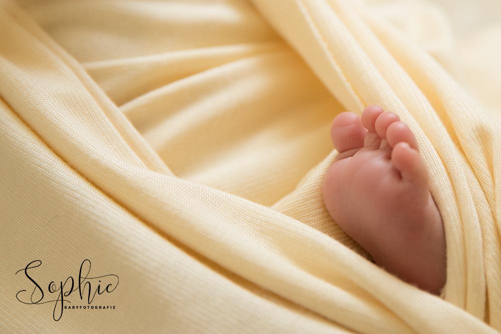 een foto van een close ups van de teentjes tijdens de newbornshoot 50 babyweetjes
